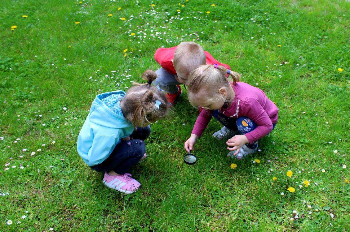 Recognise and incorporate STEM learning in early childhood